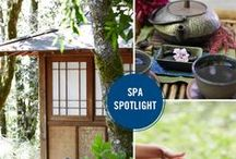 Spas in the Spotlight / At Naturopathica, we honor our amazing spa partners who empower holistic well-being in their clients and communities.  / by Naturopathica