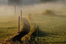Mysterious fog.