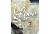 The Delicate Nature of Love / visuals for the first Zoey Chambers novel