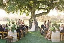 Wedding Photography / Beautiful pictures of beautiful weddings, brides & grooms