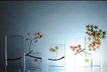 flower arrangements - ikebana