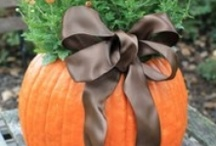 Fall Y'all - Food, Decorations, Scarecrows / by Debbie Brunin