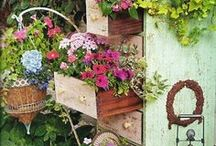 Some Sage Advice - There's Always Thyme To Garden! / by Dody Marriott