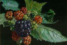 GATHERING BERRIES / The simple joy of gathering berries in Springtime...