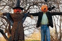 Halloween Tricks n Treats / by Elizabeth Haynes