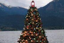 A Christmas Story / Christmas / by lisa_ranae
