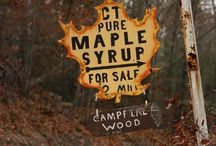 I LOVE MAPLE / Reminds me of Fall and the Woods and an old fashioned cozy deliciousness