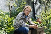 """JAMIE OLIVER / A family man who can cook... will always have my heart...plus, he's charmingly British ~ enough said! See also my """"Jools & Jamie"""" board at Jones_Girl3"""