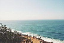 The Ocean / by Andrea Bennett