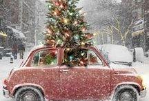Holidays :: Christmas
