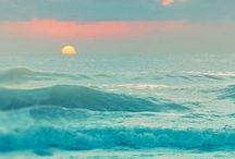 SALTY / ocean love