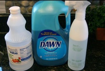 Cleaning Tips & Techniques / Great source for cleaning and products to use.