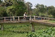 wheelchair accessible tourism South India / A Customized vacation planner and tour operator exclusively for wheelchair travelers, their families and friends. We provide Unforgettable wheelchair accessible tour experience with help of multiple local agents! Add offbeat attractions, choose local cuisines, add local activities, plan village tour or local shopping.