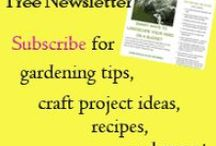 Past Newsletters / Newsletters put out by D&G Gardens and Crafts
