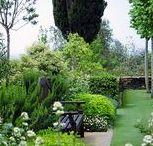 Dream Home - Garden & Patio