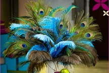 Birds of a Feather - Wedding decor and accesories using feathers - Peacock, Ostrich, Pheasant, etc. / Ck out our many other boards - All wedding related