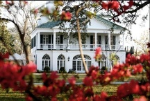 Charleston Venues / Charleston has hundreds of fantastic venues to hold your wedding ceremony, reception, rehearsal dinner, or any other event. Pin any venue that you want to share in the Lowcountry (Charleston & surrounding cities/towns) . PLEASE USE THIS BOARD TO PIN VENUES - NOT TO ADVERTISE YOUR BUSINESS. THANK YOU