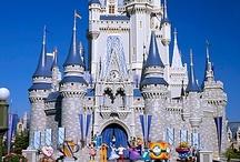 Disneyworld  / by Liz McAfee