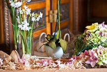 Flowers / Wedding Flowers, Flower Ideas, Wedding Flower Ideas, Wedding Photography