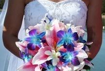 Wedding / by Claire Boeglin