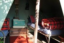camping / by Elizabeth Edwards