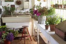 Potting / a space for dirt gardeners..