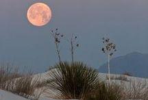 Sun / Moon / Earth / by Rebecca Klemens