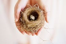 ~ nest ~ items/ideas for the home ~ / details and vignettes that make a home a home / by borrowed-light