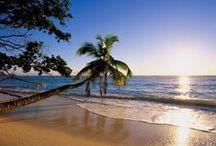 Beachy Goodness
