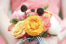 F L O R A L : D E S I G N / a photo collection of flowers & bouquets