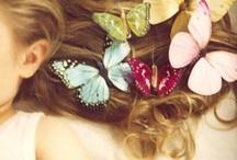 Butterflies / by Barbara Burril