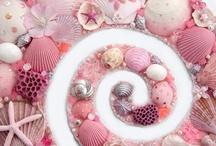 Shells / by Barbara Burril