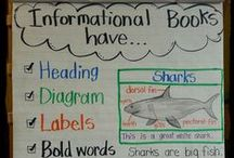 Extra Special Anchor Charts / Great anchor charts that you can make and use in your classroom.