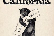 California / by Cathy Martin