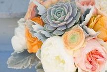 For My Wedding / by Megan Humphrey