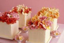 crazzzzzy cakes
