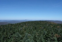 BALSAM LAKE MOUNTAIN (CATSKILLS, NEW YORK) / Hiked up this mountain on 9/26/12.