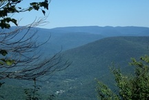 BALSAM MOUNTAIN (CATSKILLS, NEW YORK) / Hiked up this mountain on 8/30/12.