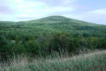 WINDHAM HIGH PEAK (CATSKILLS, NEW YORK) / Hiked up this mountain on 9/04/12.