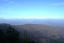 PANTHER MOUNTAIN (CATSKILLS, NEW YORK) / Hiked this mountain on 11/10/12.