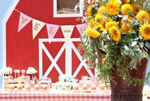 Barnyard Party Ideas / by Cristy Mishkula @ Pretty My Party