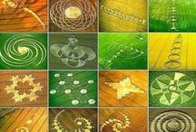 Crop circles / Just because they're interesting. They aren't made by aliens. ;-)