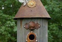 For the Birds / by Karen Doffing