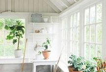 For the Home / Decor and Design Inspiration for a Charming Home / by Sugar and Charm