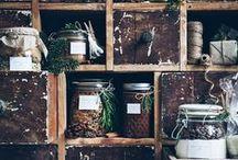 DIY and craftiness / by Elisabeth B