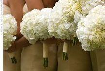 Wedding Ideas / by Melissa Gilmore