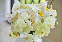 Brides Bouquet - Yellow