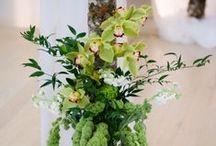 Ceremony - Green
