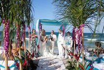 Ceremony - Tropical