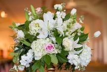 Ceremony - Ivory / Pink Pelican Weddings